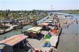 رها سازی ۱۵ هزار قطعه بچه ماهی در رودخانه دز
