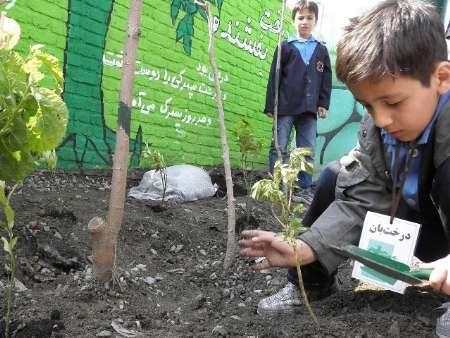 مدارس طبیعت ، مدارسی که مهربانی با طبیعت را به کودکان ایرانی می آموزند